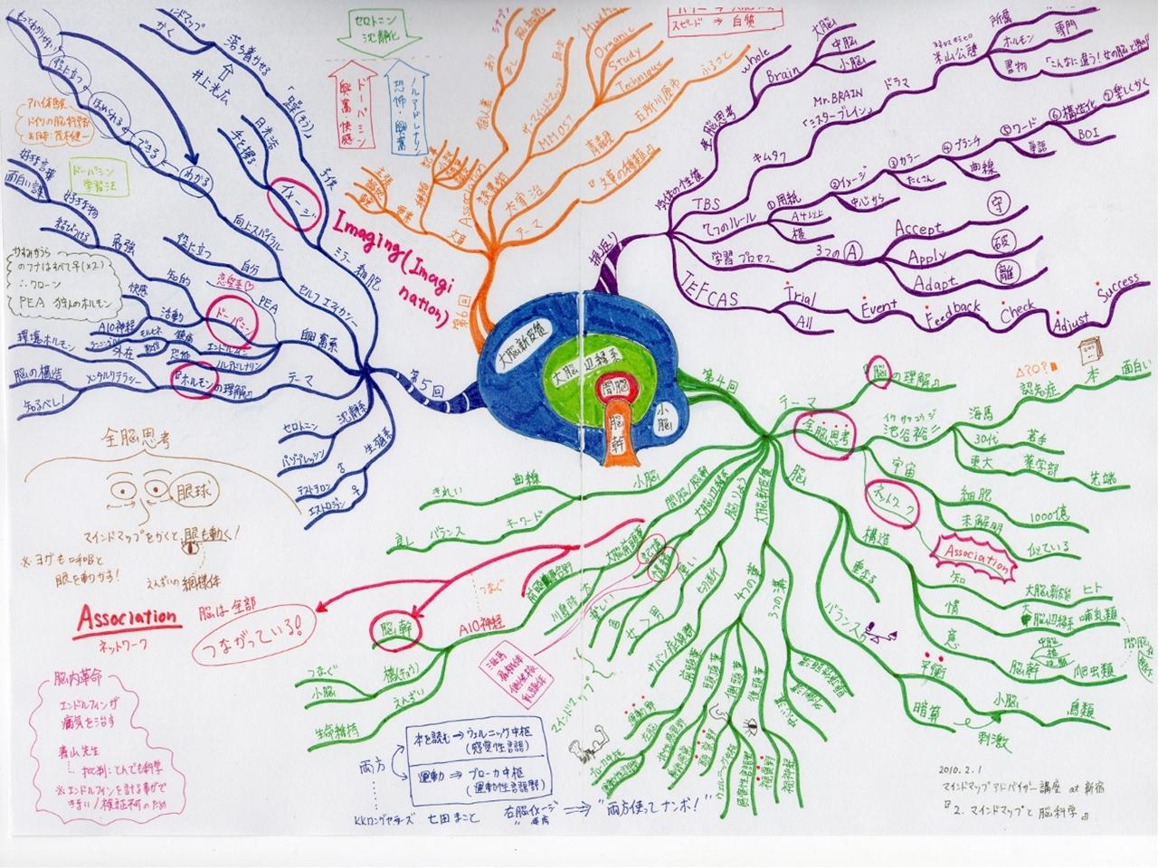 マインドマップアドバイザー講座 at 新宿 『2.マインドマップと脳科学』